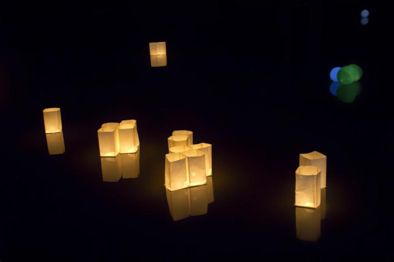 Lichtjes op de vijver